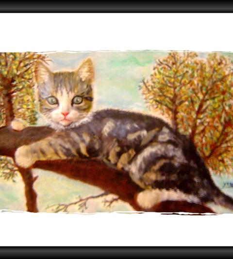 Un chat sur une branche